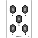 5 Bull's-Eye Target - ALL WEATHER RESISTANT TARGET ON HEAVY PAPER