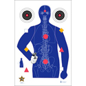 Sarasota Co. (FL) Sheriff's Office Modified B-21E Target w/ Vital Anatomy