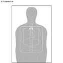 TQ-15 Qualification Target w/ Vital Anatomy