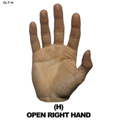 Open Right Hand Hand Overlay