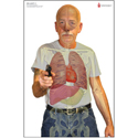 MN Center for Criminal Justice Skill Builder Anatomical Target One