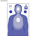 Bureau of ATF Transitional Target