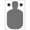 Phoenix (AZ) PD Modified TQ-21 Qualification Target